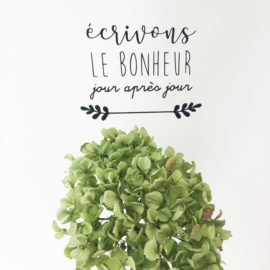 adf-sticker-ecrivonslebonheur-3